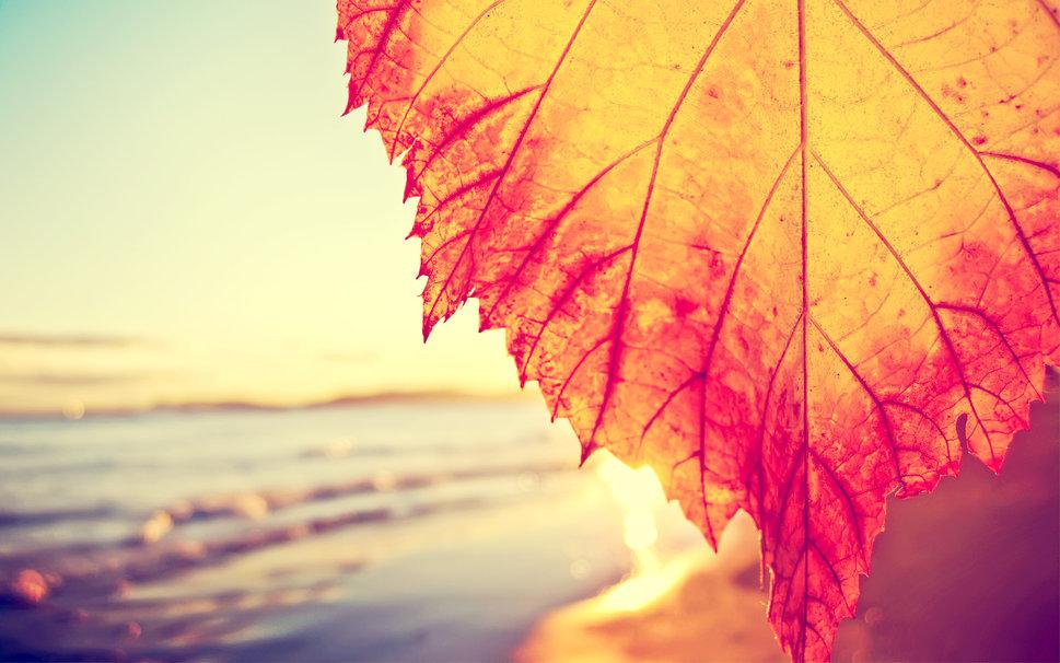 Top spots for an early Autumn break